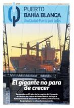 Consorcio. Puerto. Suplemento. Bahía Blanca. La Nueva.